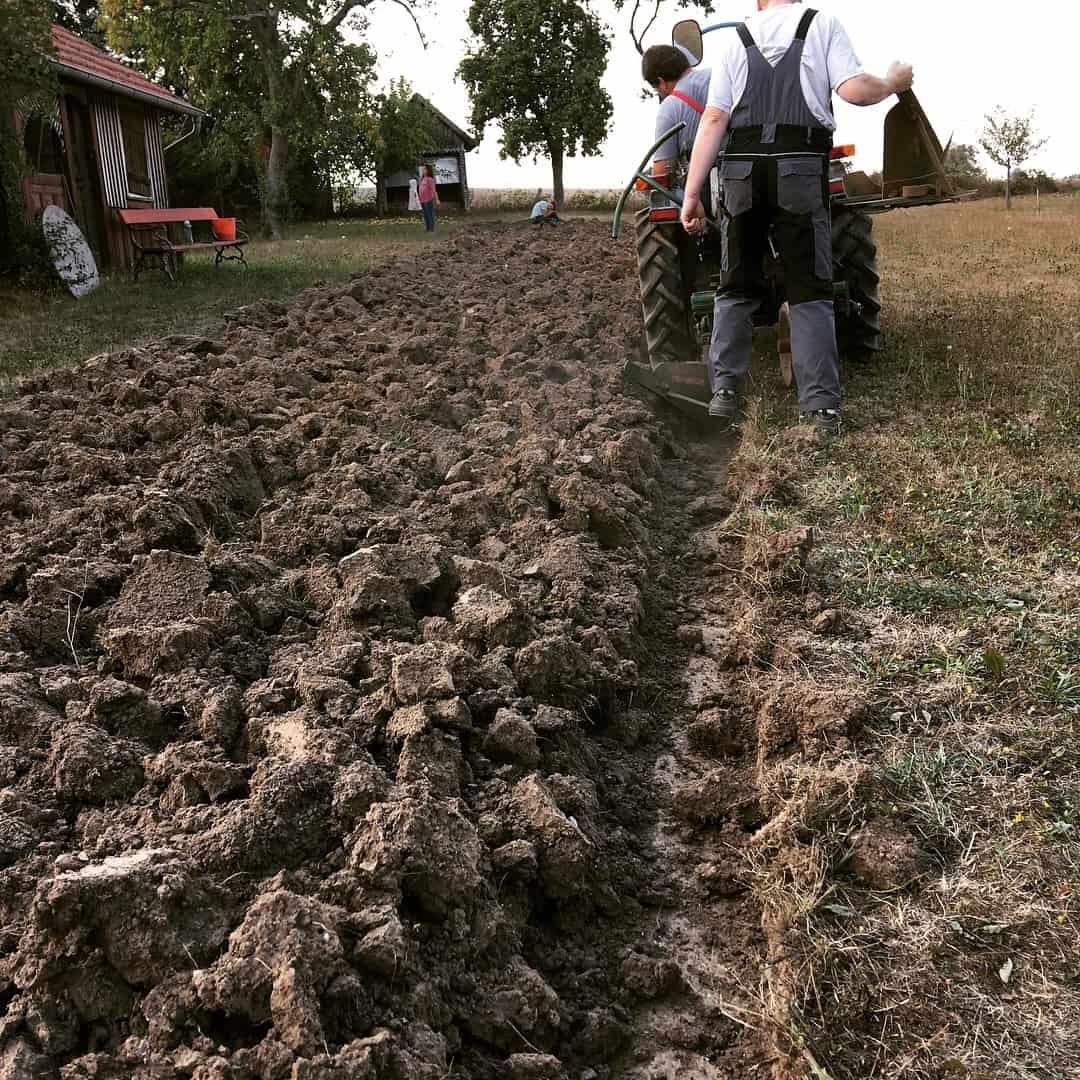 Harten Lehmboden in Gemüsebeet verwandeln