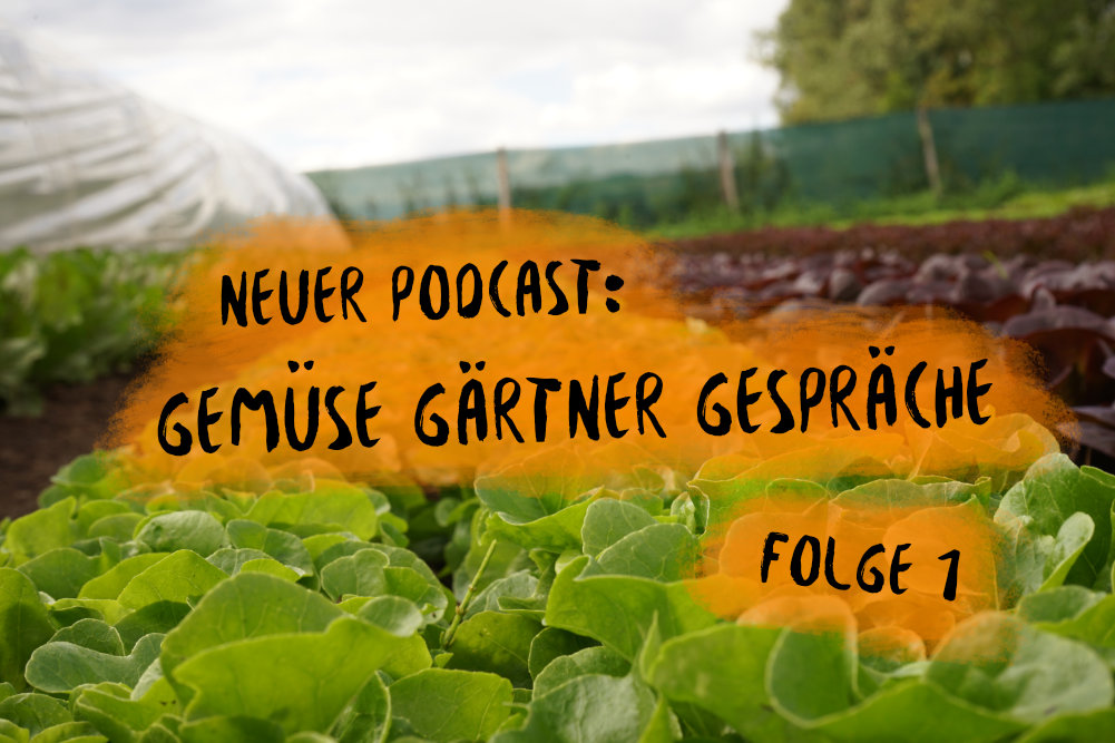 PODCAST 17: Gemüse Gärtner Gespräche 1